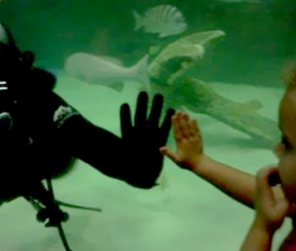 Scuba Diver With Little Girl